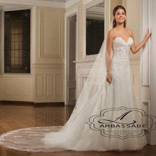 Voorkant van vrouw in strapless bruidsjurk met sluier.